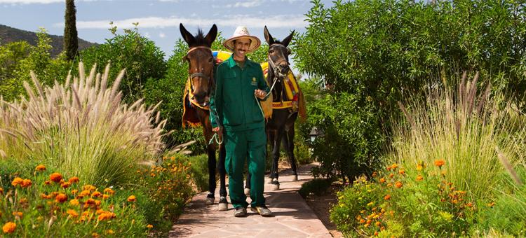 inspired-luxury-kasbah-tamadot-morocco