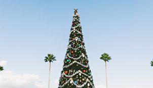 A Caribbean Christmas